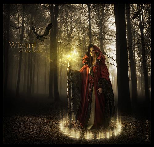 Blend - Wizard of the Forest - versión 1